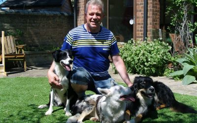 """""""CIDBT has given me first rate start to my canine career"""" – Malcolm Paul Johnson (MA, MCFBA. MGODT)"""